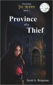 Province of a Thief by Scott A Borgman cover